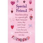 K139E Special Friend HW K/Sake