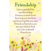 K135E Friendship HW K/Sake